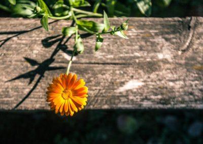 marketingm_produktova-fotografie_blog_12