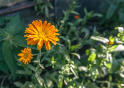 marketingm_produktova-fotografie_blog_16